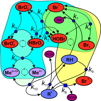 Реакция Белоусова - Жаботинского настолько сложна, что до сих пор учёные пытаются установить взаимодействие различных...