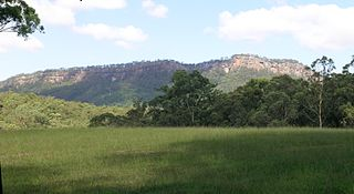 Bago Bluff National Park Protected area in New South Wales, Australia