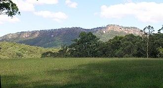 Bago Bluff National Park - Bago Bluff