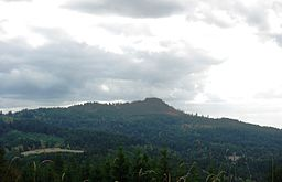 Bald Peak of the Chehalem Mountains in Oregon.JPG