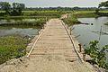 Bamboo Bridge across Stream Ichamati - Purba Para - Baduria - North 24 Parganas 2015-04-11 7260.JPG