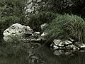 Banat,Nera Canyon - panoramio (55).jpg
