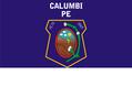 Bandeira Municipal de Calumbi.png