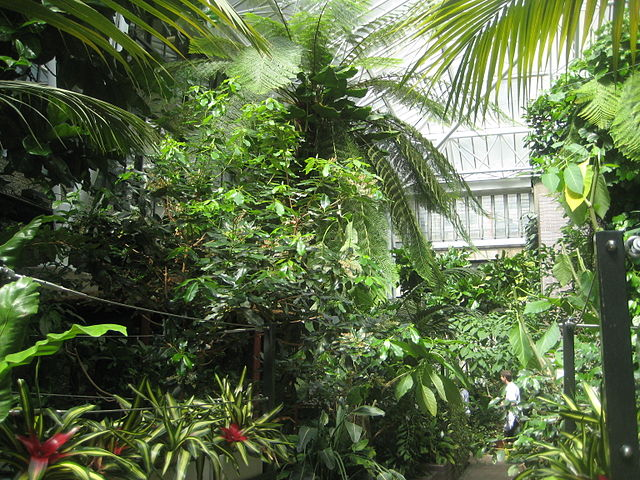 5 Of The Most Famous Conservatories In The World Caulfield Conservatories