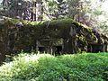 Bartošovice v Orlických horách, R-S 67 (rok 2010; 03).jpg