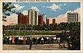 Baseball In Lincoln Park, Chicago, Illinois (NBY 414896).jpg
