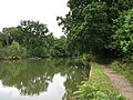 Basingstoke Canal - geograph.org.uk - 1425385.jpg