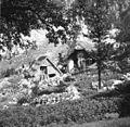 Bavščici 28, pri Činci 1952.jpg