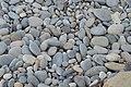 Beach pebbles at Promenade des Anglais.jpg