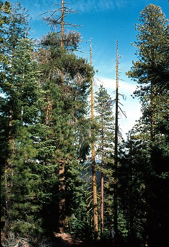 Bear Valley National Wildlife Refuge - Image: Bear Valley National Wildlife Refuge
