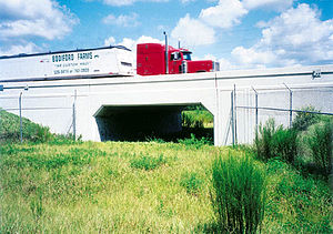 Wildlife crossing - Florida State Route 46 was elevated over this underpass. Notice the channeling fences on either side of the crossing.