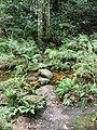 Beauchamp Falls - panoramio (5).jpg