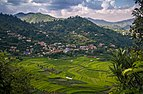 Beautiful Balthali Village.jpg
