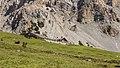 Bergtocht van S-charl naar Alp Sesvenna. 10-09-2019. (d.j.b) 18.jpg