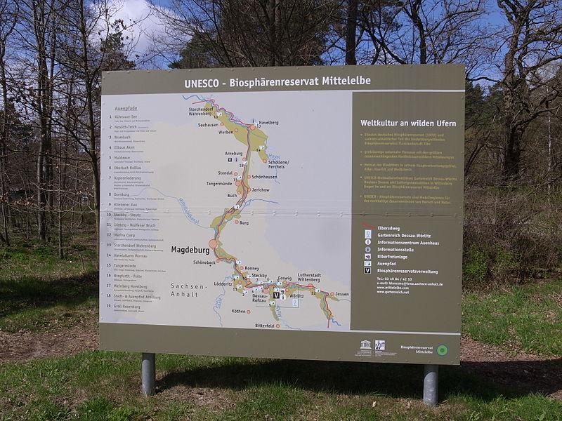 File:Biosphärenreservat Mittelelbe,Informationstafel am Informationszentrum.JPG