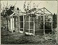 Bird notes (1903) (14769943783).jpg