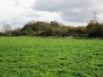 Bishop's Meadow - Image: Bishop's Meadow 6