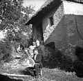 """Blaž plete """"berač"""" za krompir, Zakraj 1954.jpg"""