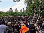 Black Lives Rally op Washington Square (49978428936) .jpg