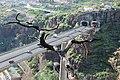 Blick vom Botanischen Garten auf die Ponte João Gomes und Tunnelportale.jpg