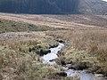 Boggy depression by the Afon Groes Fawr - geograph.org.uk - 1803922.jpg