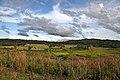 Bohol - panoramio.jpg