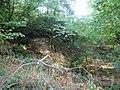 Bomb crater, Blowers Wood, Hempstead - geograph.org.uk - 1511094.jpg