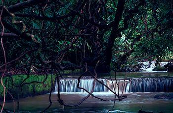 Bondla Wildlife Sanctuary.jpg