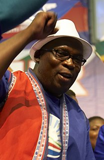 Bonginkosi Madikizela South African politician