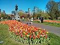 Boston, MA, USA - panoramio (5).jpg