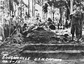 Bougainville USMC Photo No. 1-15 (21573683776).jpg
