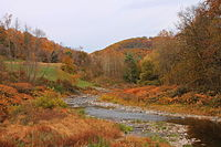 Bowman Creek looking downstream from State Route 3003 (2).JPG