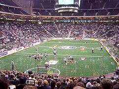 Foto del Interior durante un juego de los Swarm lacrosse.
