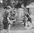 Boy Scouts Pick Fruit For Jam- Life on a Fruit-picking Camp Near Cambridge, England, UK, 1943 D16199.jpg