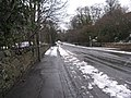 Braid Road, the last day of March - geograph.org.uk - 1779098.jpg