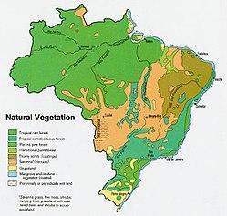 Natural vegetation map of Brazil, 1977