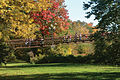 Bridge-in-fall-image.jpg