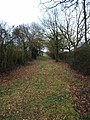 Bridle Path to Buckhatch Farm - geograph.org.uk - 124117.jpg