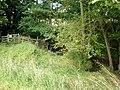Bridleway near Bugthorpe Beck - geograph.org.uk - 1429227.jpg