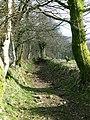 Bridleway through the fields above the Sawdde Fechan - geograph.org.uk - 1191398.jpg