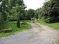 Bridleway to Birdwood - geograph.org.uk - 926807.jpg