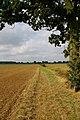 Bridleway to Bushetts - geograph.org.uk - 564409.jpg
