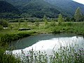 Bubľajúce (sírne) jazierko - panoramio.jpg