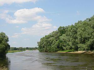 Bug River - Image: Bug wlodawa 01b 04