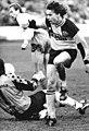 Bundesarchiv Bild 183-1990-1103-015, 1. FC Dynamo Dresden - FC Hansa Rostock 0-0.jpg