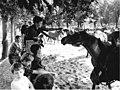 Bundesarchiv Bild 183-J0730-0024-001, Graditz, Freizeitlager für LPG-Kinder.jpg