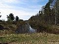 Burtnieku pagasts, Latvia - panoramio.jpg