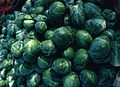 CSIRO ScienceImage 2453 Brussel Sprouts.jpg
