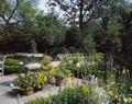 California garden LCCN2011635852.tif