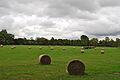 Campo en Oxford.jpg